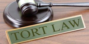 Business Law: Torts and types of torts