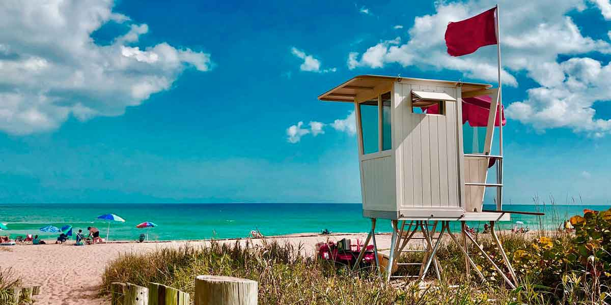 You are currently viewing Florida estate planning forms that are most essential